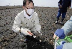 农业土壤检测