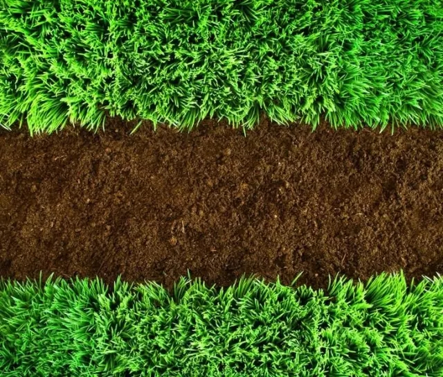 棚室土壤检测 揭露棚室土壤养分秘密
